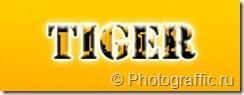 тигровый текст