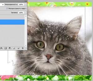 быстрое выделение белого фона рамки фотошоп