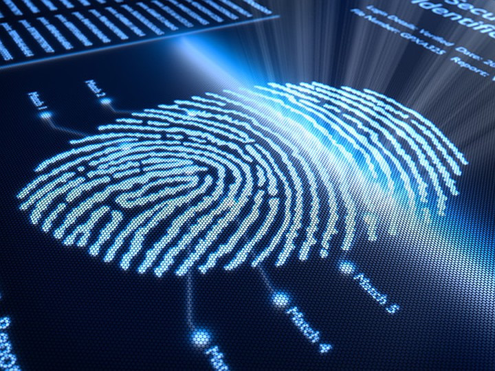 Рисунок отпечатка пальца