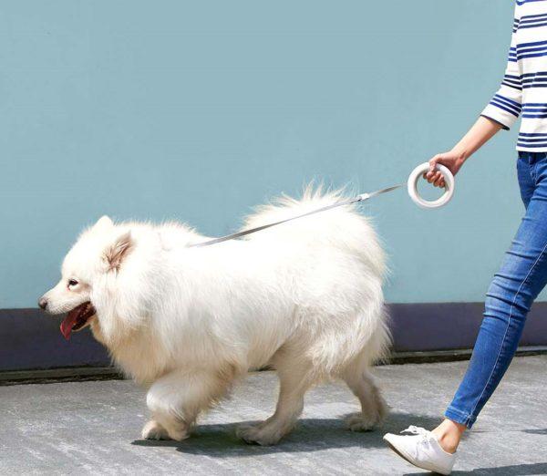 Поводок-рулетка для собак Moestar UFO от Xiaomi