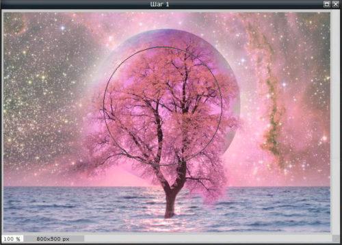 Размещаем изображение за деревом